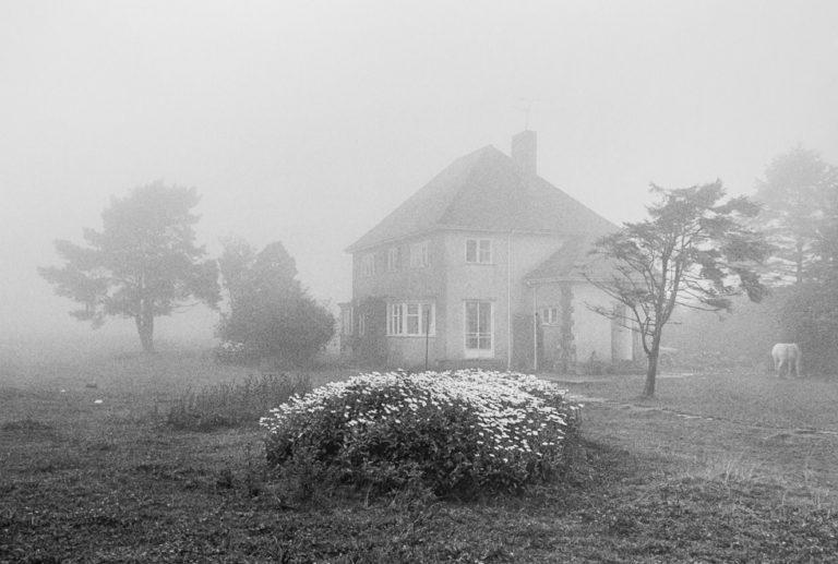 1977, Exmoor, Royaume-Uni