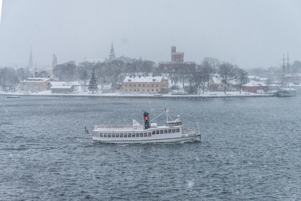 20170104-Stockholm-494